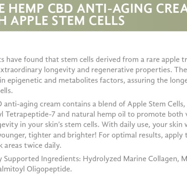 Pure Hemp CBD Anti-Aging Cream